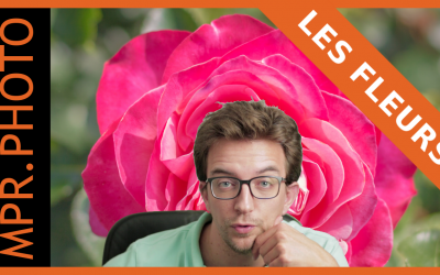 Tuto Lightroom : Retouche d'une photo de fleur